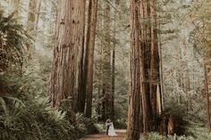 How to Elope in a National Park // Places to Elope for the adventurous couple // outdoor wedding