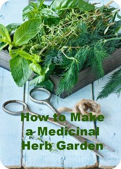 Make a Medicinal Herb Garden.                                                                                                                                                                                 More
