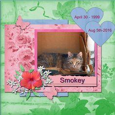 Aug. 2016 Smokey Aug.2016Bonus Hi Jemima , Here is my Aug. 2016 Smokey page, thank you for the loving bonus q-page,  Read more: http://letmebeablessing.freeforums.net/thread/65/nellekes-gallery?page=1#ixzz4L6ccf6Ty