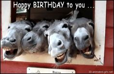 Ideas Funny Happy Birthday Quotes For Friends Watches Happy Birthday Animals, Happy Birthday Quotes For Friends, Funny Happy Birthday Pictures, Happy Birthday Funny, Animal Birthday, Happy Birthday Cards, Birthday Wishes, Happy Birthday With Horses, Birthday Email