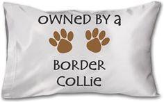 Köpekli - Owned By a Border Collie Kendin Tasarla - Yastık 45 x 27 x 10 cm