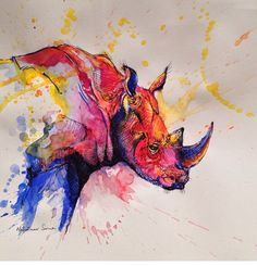 I love art like this | rhino | colorful watercolor <3