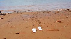 Your New Brunswick beach vacation can include a visit to Parlee Beach in Shediac, a family vacation in a cottage by the beach, or other sandy beaches. Hopewell Rocks, New Brunswick Canada, Win A Trip, Sandy Beaches, Best Vacations, Cool Photos, Footprints, Sink, Camping