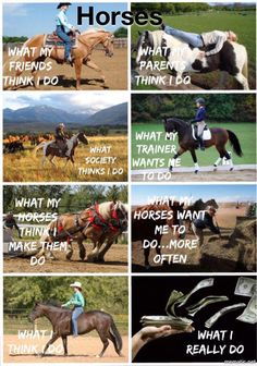 I made this as the others Iv seen aren't super accurate for me ? I made this as the others Iv seen aren't super accurate for me ? - Art Of Equitation Funny Horse Memes, Funny Horse Pictures, Funny Horses, Cute Horses, Funny Animal Memes, Horse Love, Cute Funny Animals, Funny Memes, Horse Humor