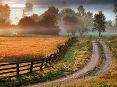 Ooh, this reminds me a little of cross country runs through the KY Horse Park :)