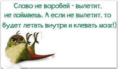 https://www.facebook.com/373444882686021/photos/a.373447809352395.90399.373444882686021/963160813714422/?type=1