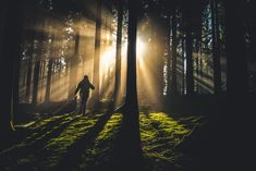 Sensitive People, Highly Sensitive, Infp, Introvert, Create Meaning, Persona Feliz, Walk In The Light, Forest Adventure, Change Picture