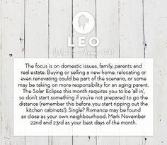 Leo horoscope November 2013