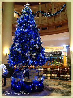 This is what I wished my blue & silver tree looked like. Beautiful!!