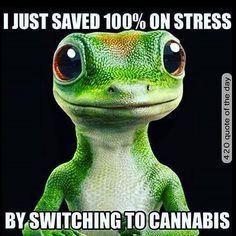 I Just Save 100% on Stress by Switching to Cannabis - Marijuana Humor - CannabisTutorials.com