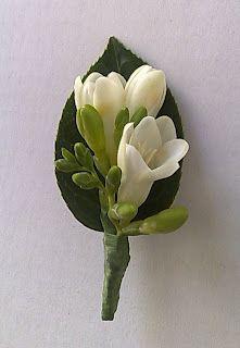 Button hole - freesia on camellia leaf
