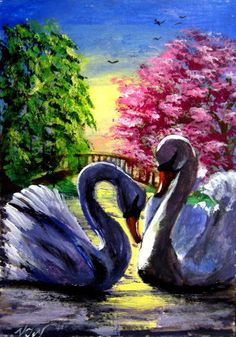#aceo #animals #art #pic #bird #swan  #2millionartists #amazing #smile #old #fashion #style #flowers #hair #awesome #nice #eyes #loveit #colorful #beauty #sweat #face #green #new