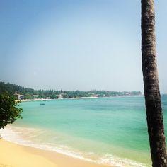 sri lanka tropical - Google Search Sri Lanka, Tropical, Google Search, Beach, Water, Outdoor, Gripe Water, Outdoors, Seaside