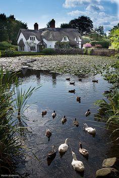 Thatched Cottage, Badger, Shropshire