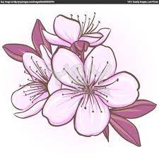 cherry blossom! - Google Search