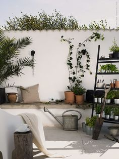 because it's Ikea. (my) unfinished home: just because it's Ikea.(my) unfinished home: just because it's Ikea. Ikea Outdoor, Outdoor Plants, Outdoor Rooms, Outdoor Dining, Outdoor Gardens, Outdoor Decor, Interior Exterior, Exterior Design, Balcony Plants
