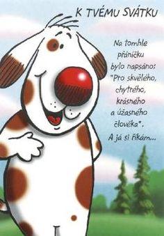 originální přání k svátku 47 best Přání k narozeninám images on Pinterest | Adorable animals  originální přání k svátku