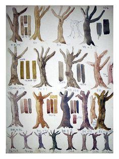 Vintage Original Watercolor Painting Study - Tree Trunks