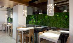 Combinando moss&plants con corporeas en liken peppertmint en Rest. El Coso del Mar (Valencia) por Conca&Marzal