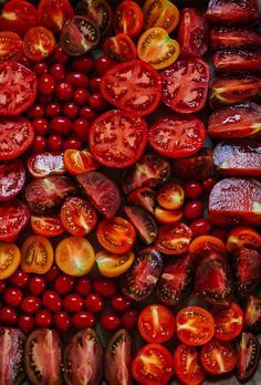 Gorgeous red tomatoes