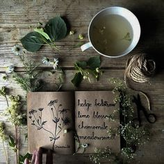 Mags — Tea and Village Plant Witch Aesthetic requested by. Plant Aesthetic, Witch Aesthetic, Nature Aesthetic, Aesthetic Green, Flower Aesthetic, Aesthetic Images, Summer Aesthetic, Character Aesthetic, Aesthetic Fashion