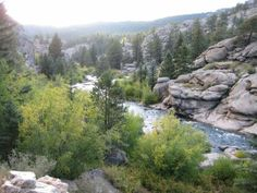 Eleven Mile Canyon   South Platte River - 11 Mile Canyon   Trouts Fly Fishing