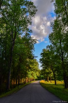 A peaceful road that leads to The Red Horse Inn.