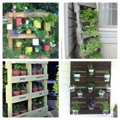 jardines verticales con pales