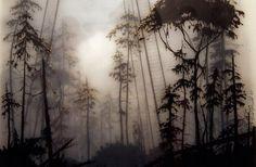 Многослойные туманные пейзажи Брукса Шейна Зальцведеля (Brooks Shane Salzwedel)