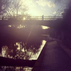The sun streams across Regent's Canal in London 14°C I 57°F #BurberryWeather