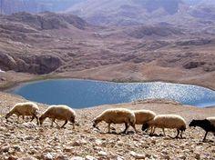 Yedi göller.. Fotoğraf: R. Dinlenmez