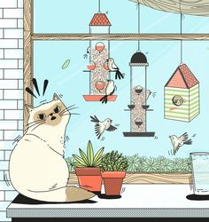 Birds are trying to set up a bird colony in your backyard. | 11 Things Your Cat Is Desperately Trying To Tell You