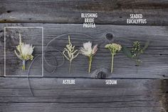 How to create a boutonniere