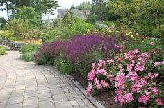 Garden Photo Gallery - Connecticut, Massachusetts, New Hampshire, Rhode Island, Vermont, New England