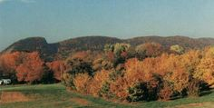 Sleeping Giant in the fall.... hometown love