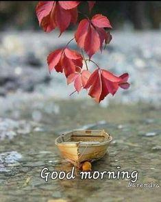 Good Morning Coffee Gif, Good Morning Sunday Images, Good Morning Images Flowers, Good Morning Images Download, Happy Morning, Good Morning Picture, Good Morning Greetings, Good Morning Wishes, Good Morning Quotes