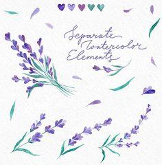 Watecolor Lavender Clip Art Set by Yashroom on @creativemarket