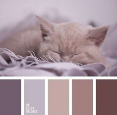 The combination of muted and velvety lilac-brown hues. Soft blankets, sweaters, shawls, wraps and scarves, as well as bath towels and bathrobes in such col. Color Palette For Home, Colour Pallette, Color Combos, Paint Combinations, Design Seeds, Living Room Color Schemes, House Color Schemes, Soft Blankets, House Colors