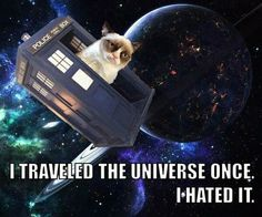 Grumpy cat humor funny Dr Who