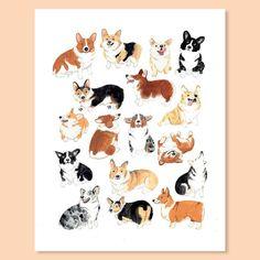 Corgi Club Greeting Card is created from an original gouache painting by Melinda Tracy Boyce. Made in the USA. Corgi Drawing, Cute Dog Drawing, Animals And Pets, Cute Animals, Frozen Dog Treats, Corgi Pictures, Pembroke Welsh Corgi, Corgi Dog, Dog Art