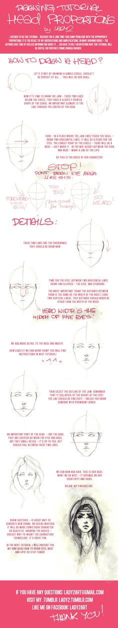 head_proportions_tutorial. by Lady2.deviantart.com on @deviantART
