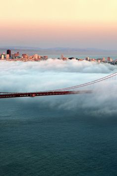"SAN FRANCISCO - It was like this almost everyday...so cool to actually ""drive"" through/above the clouds!"