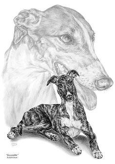 Irresistible - Greyhound Dog Print Print By Kelli Swan [http://www.pencilplace.com]