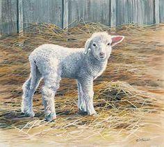"Tattoo reference -Wildlife Experience "" New Beginnings "" Lamb - Original Painting by Susan Bourdet Animal Paintings, Animal Drawings, Sheep Paintings, Painting & Drawing, Watercolor Paintings, Lamb Drawing, Farm Animals, Cute Animals, Sheep Art"