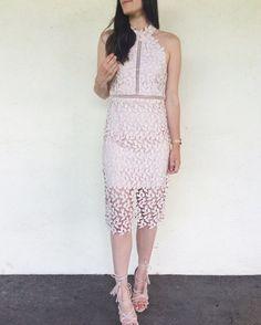 Bardot Gemma Halter Lace Sheath Dress Fashion Lace