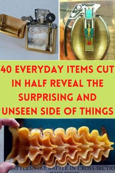 40 Everyday Items Cut In Half Reveal The Surprising And Unseen Side Of Things