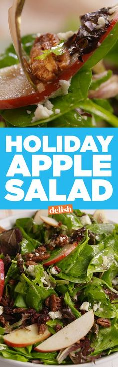 """Holiday Apple Salad Holiday Apple Salad Looking for the best salad recipe for a dinner party?"""", """"name"""": """"Holiday Apple Salad"""", """"authors"""": . Sin Gluten, Holiday Recipes, Dinner Recipes, Apple Salad Recipes, Spinach Salad, Feta Salad, Avocado Salad, Holiday Dinner, Soup And Salad"""