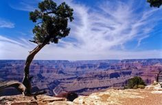 The Grand Canyon, Arizona. (I am seriously considering moving to Arizona when I get older and when I'm able to oh my god this place is so wonderful)