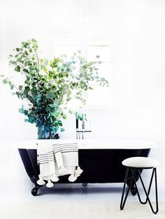 A hit of black in a white  bathroom - a bouquet of therapeutic eucalyptus nearby and every bath needs a stool nearby