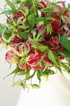 Floral Fusion | Gloriosa Lilies